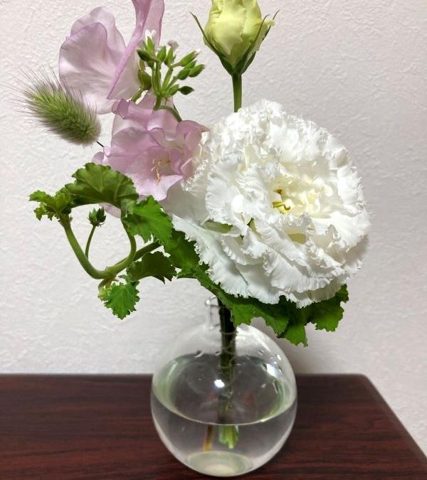 Flower this week
